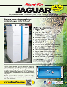 Jaguar-Feature-Image
